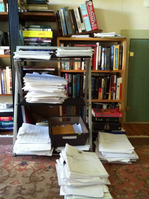 Paper manuscripts in Linda's home office.